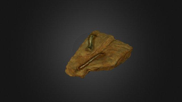 Mariliasuchus - Ulna Radio 3D Model