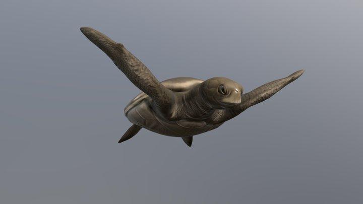 Chevron WGC AR | Sea Turtle 3D Model