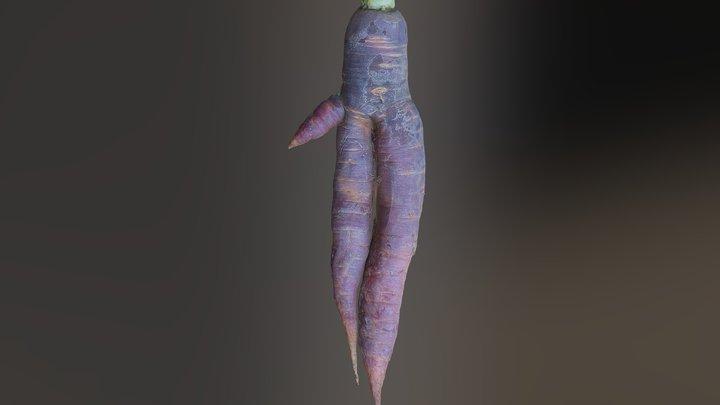 Mandrake Carrot 1 3D Model