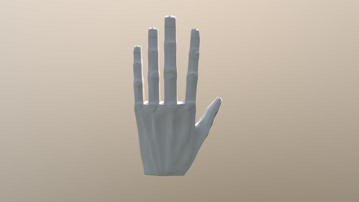 Blender Hand Xavier Van Loo 3D Model