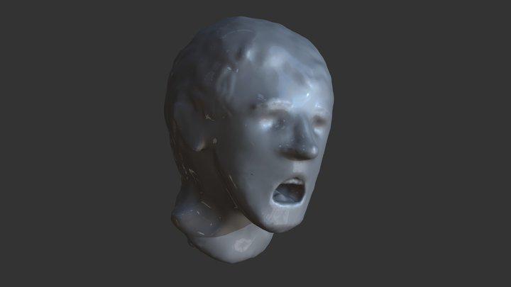 Screaming Head 3D Model