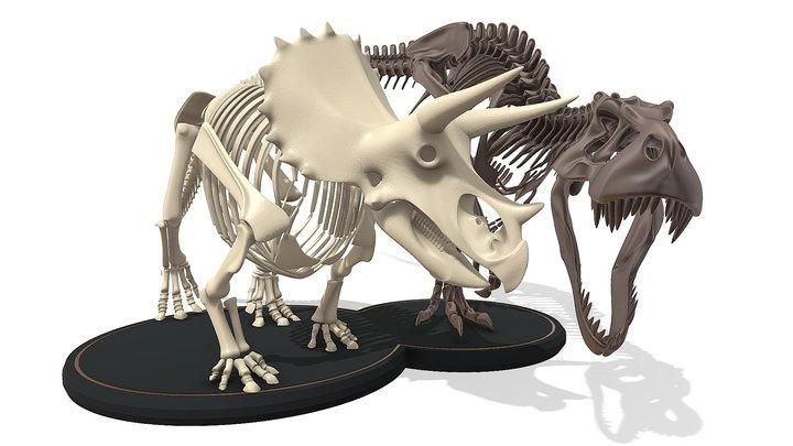 Tyrannosaurus Triceratop Skeleton 3D Model