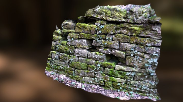 Sandstone wall covered with ivy an mooses 3D Model