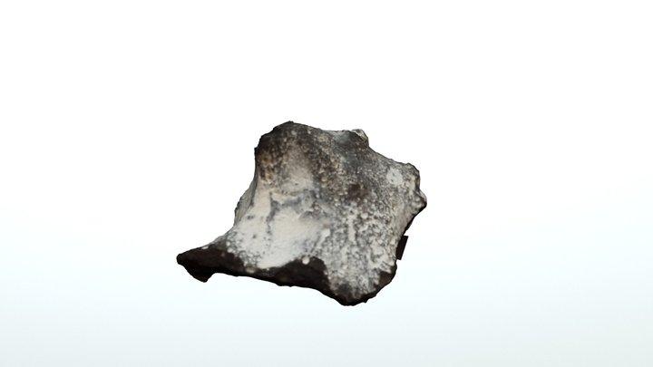 Feuerstein 3D Model
