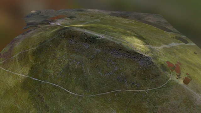 Sugar Loaf mountain near Abergavenny, Wales 3D Model