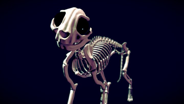 Skelly the Cat - SJ day 7 3D Model