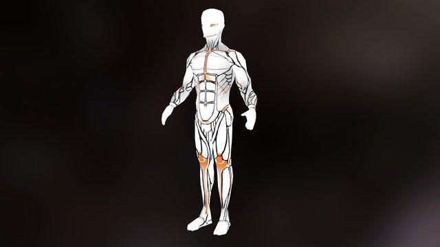 Human Ecorche 3D Model