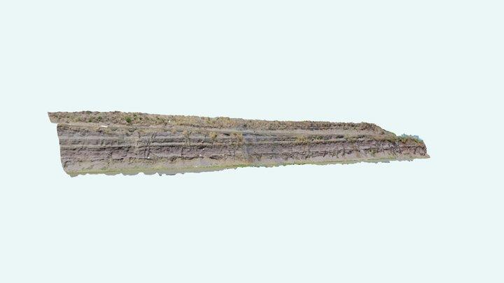 Clastic Dykes Paraná Basin 3D Model