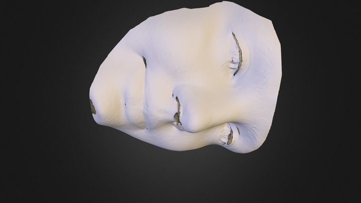 100274 3D Model