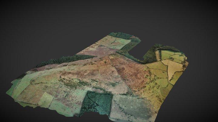 Spinans Hill 3D Model