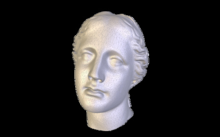 Head Sculpture - 90% reduced (Vizup demo) 3D Model
