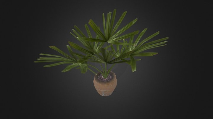 potted_plant-2 3D Model