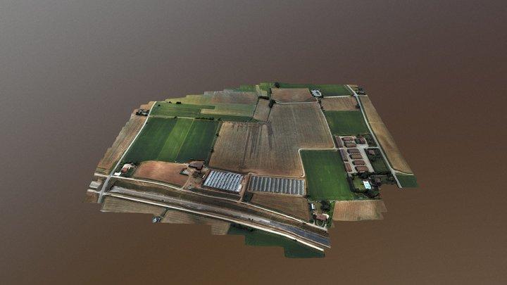 Campo Agricolo 3D Model