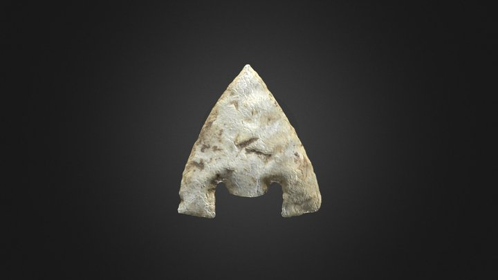 Arrowhead - barbed and tanged 3D Model