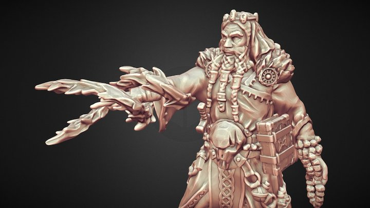 The War Wizard 3D Model
