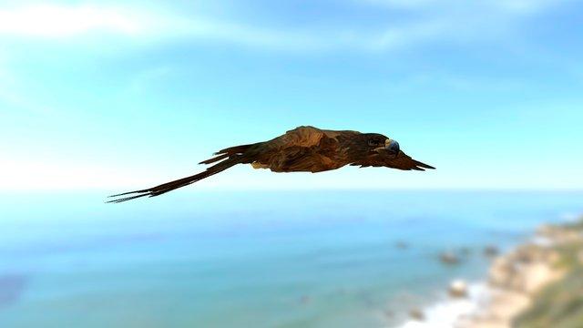 Flying Eagle. 3D Model