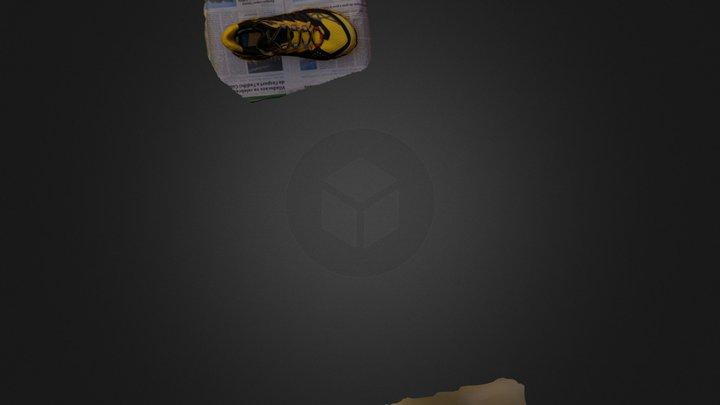 Capasc 3D Model