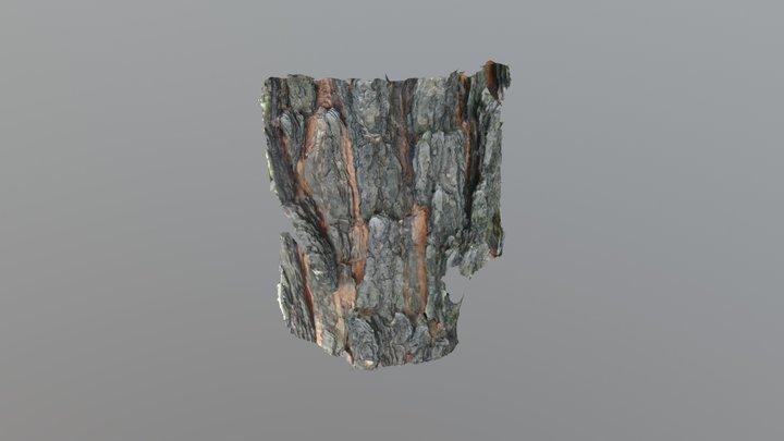 Longleaf Pine Bark 3D Model