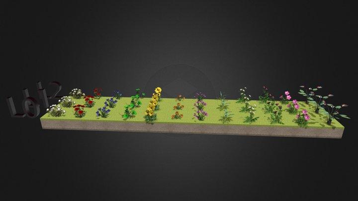Flores 3D Model