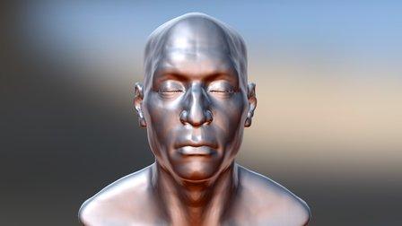 Speed Head Anatomy 3D Model