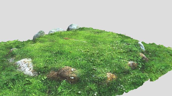 Glen Lonan 2 3D Model
