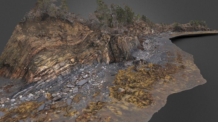 Ovens Anticline - Beach Section 3D Model
