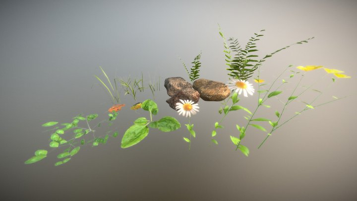 Realistic Nature Asset Pack 3D Model