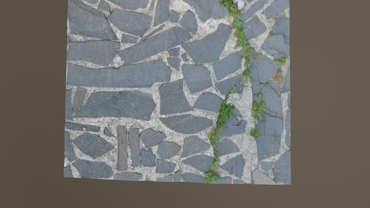 Old pavement | Negresti-Oaş Village Museum 3D Model