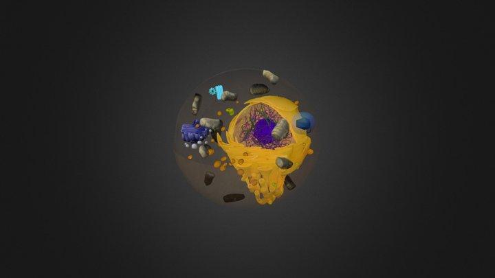 celula teste 3 3D Model