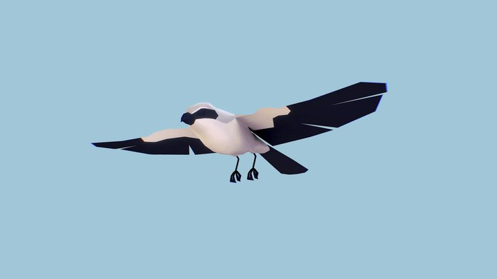 Flying Animation 3D Model