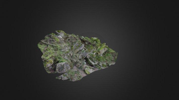 Kaali III outcrop, Estonia 3D Model