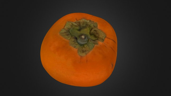 The Persimmon 3D Model