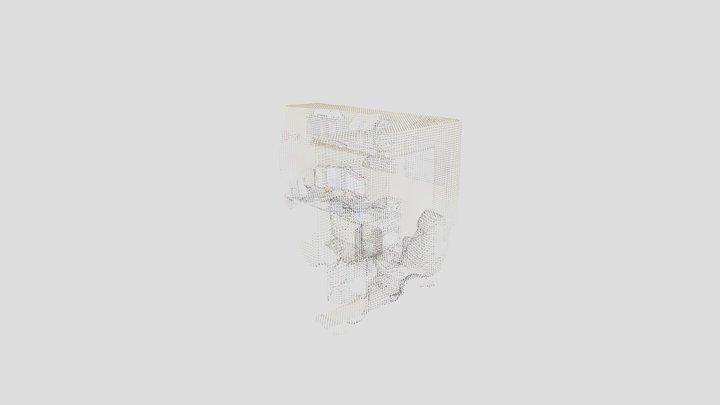 Scan_1 3D Model