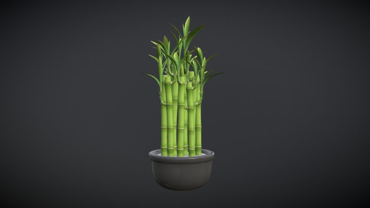 Bamboo Pot Plant 3D Model