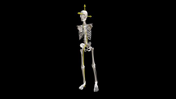 1 Energy -- Body Rise, One Leg, Free Chest Side 3D Model