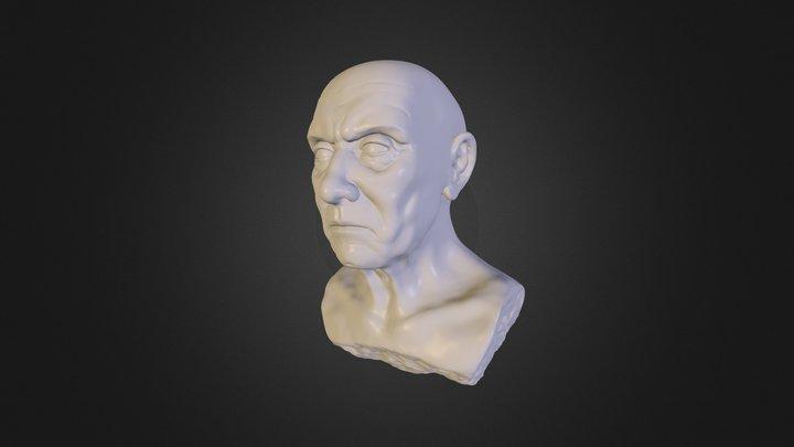 bust_model_01 3D Model