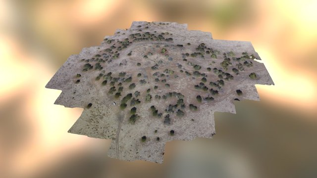 Ridge Ruin Simplified 3d Mesh