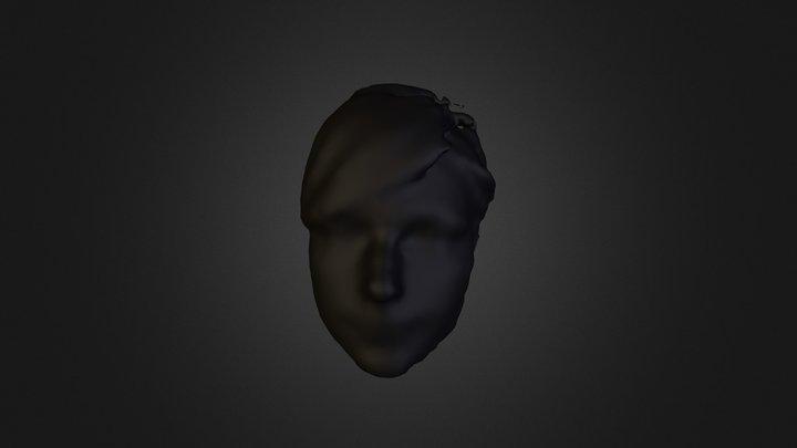 tamara_25_12_clean 3D Model