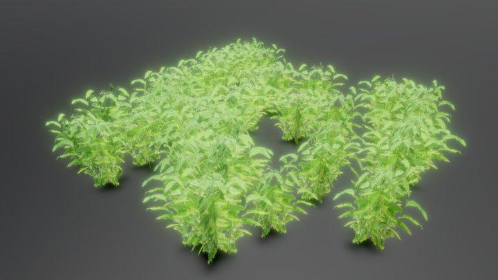 Green Shrub 3D Model