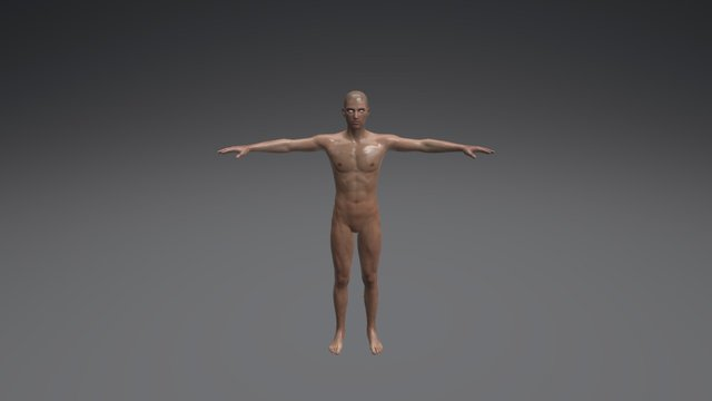 Male Drawing Poses 003 (Muscular) 3D Model