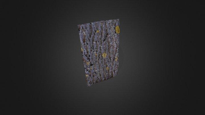 3D tree bark Oak 3D Model