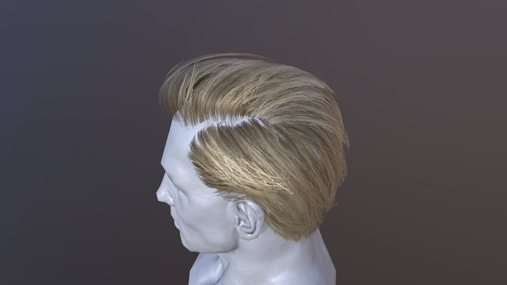 Male Hair Cards (blonde) 3D Model