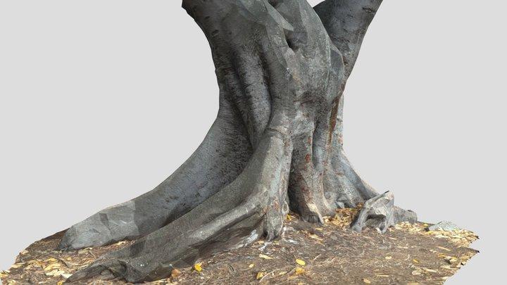 Tree Trunk 26 3D Model