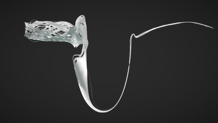 PVP V2.1_Cuttlefish_S2-3 3D Model
