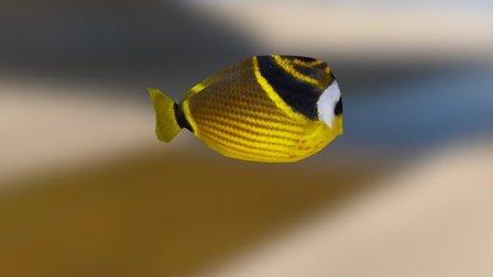 Fish Yellow 3D Model