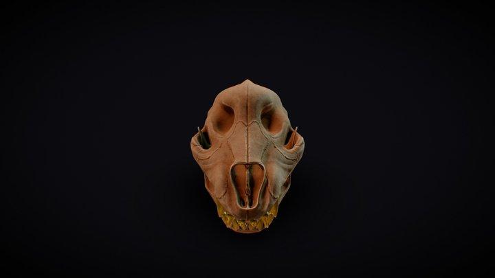 Wolf Skull 3D Model