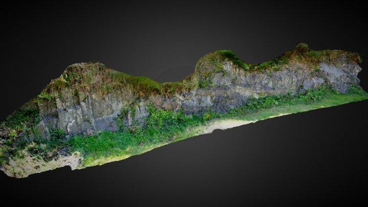 Metasediments & Igneous Intrusions Carlingford. 3D Model