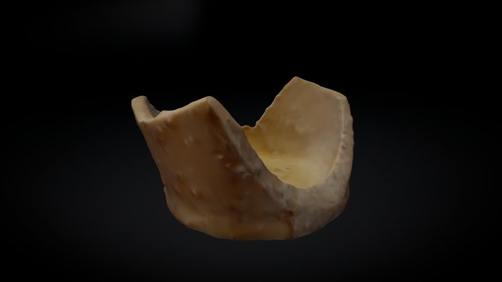 Test Sherd with marine accretion 3D Model