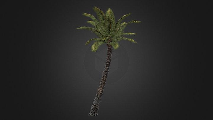 Palm-1 3D Model