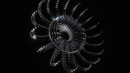 Di-Octo 3D Model